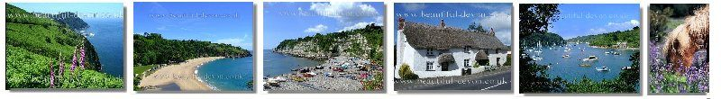 Devon Tourism and Travel Guide Welcome